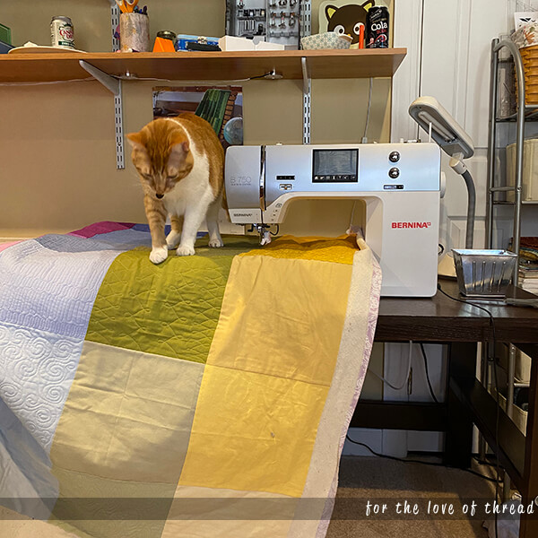 William the cat sitting on a quilt at the sewing machine